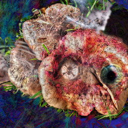 colorful mushroom art abstract cool awesome artistic freetoedit