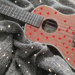 ukulele musicalinstruments rosas lavieenrose freetoedit srcrosesarered rosesarered