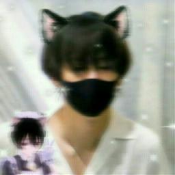 aesthetic aestheticedit yoongi bts catboy kpop freetoedit