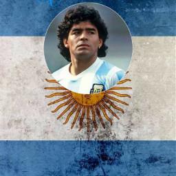 reymaradona🇦🇷 reymaradona diegomaradona🇦🇷 rip😢 futebol⚽ 10 maradona🇦🇷 campeão mito freetoedit diegomaradona rip futebol maradona