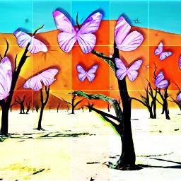 fly freetoedit srcbutterfliescrown butterfliescrown