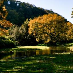 autumn autumncolors trees river sun nature myoriginalphoto nofilter