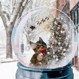 freetoedit rcsnowglobe snowglobe