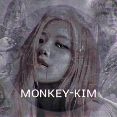 monkey-kim