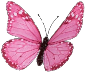 freetoedit butterfly butterflyeffect butterflies butterfliesstickerremix butterflywings butterflys glitter sparkle glitterwings sparkles glittery glitteroverlay magic pink magenta insect bug purple cute aesthetic tumblr outline overlay background