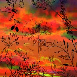 freetoedit blacklines lines black aestheticwallpaper aestheticedit puestadesol sun orange orangeaesthetic plants