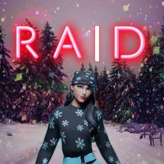 raid_fn