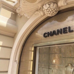 aesthetic asthetic aesthetics chanel designed shop store building