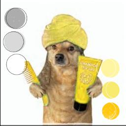 kolorroku żółty💛 freetoedit żółty rccolorsoftheyear colorsoftheyear