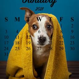 kalendarznastyczeń freetoedit srcjanuarycalendar januarycalendar