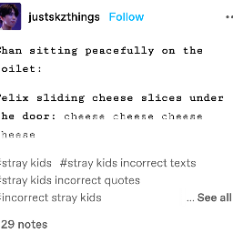 incorrectquotes skzincorrectquotes meme funny funnyquotes