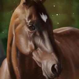 wacom art digitalpainting adobe photoshop horse drawing illustration illustrator digitalart animal