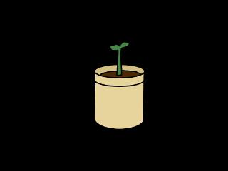plant gogreen plantpot leaf seeds freetoedit