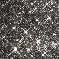 freetoedit glitter glittereffect glittery glitteroverlay overlay papicks viral popular tiktok glare spark sparkles star stars shiningstars shining aesthetic shine glow white prism beautiful effect filter