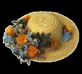 hat cottagecore plants sunhat flowers freetoedit