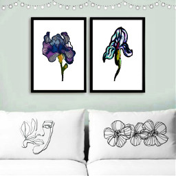 pillows irises iris flora freetoedit ircgallerywall gallerywall