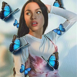 butterflies oliviarodrigo freetoedit srcbluebutterflies bluebutterflies