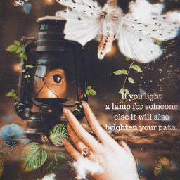 quote art fantasy lamp moth nature dreamy magical stestyle ste2021 madewithpicsart love
