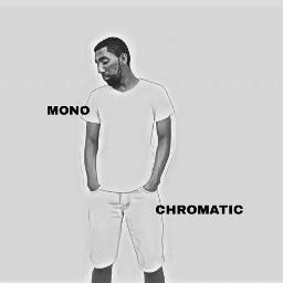 blackandwhite picsart monochromatic