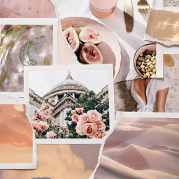 collage collagebackground collageaesthetic aesthetics aesthetic pink collageart freetoedit