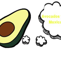 avocados freetoedit