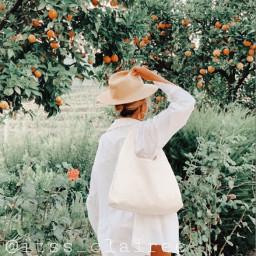 freetoedit aesthetic cottagecore peachy oranges fun