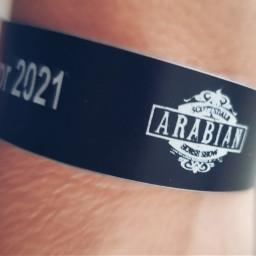 arabian horseshow 2021