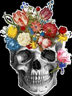 skull skullflowers death skullaesthetic freetoedit
