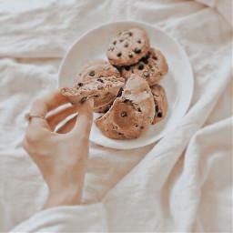 snacktime cookie aesthetic richgirlaesthetic notpeachy