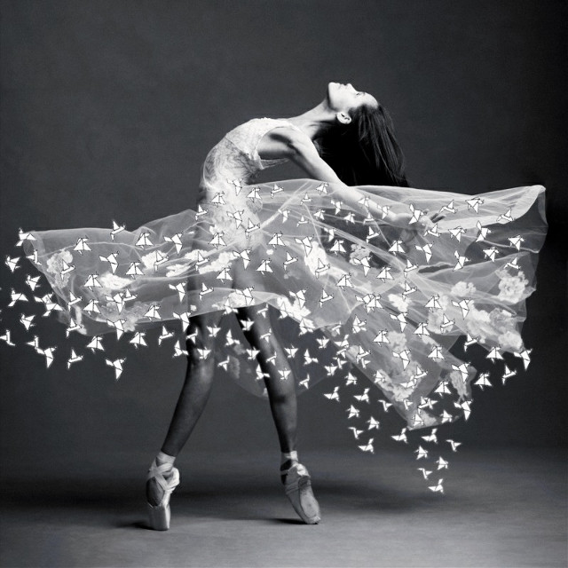 🏆𝐖𝐈𝐍𝐍𝐄𝐑🏆 i have to say thank you for all the support and for voting me ☺🥰💋💕 #ballerina #balletdancer #blackandwhite  #srcpapercranes #papercranes