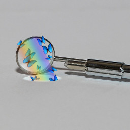 vote rainbow butterfly challengepicsart picsart freetoedit ircminimirror minimirror