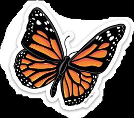 freetoedit sticker stickers