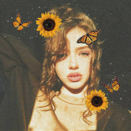 yellow sunflower freetoedit