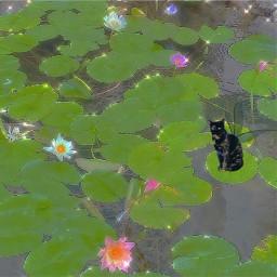 fairycore fairy cat freetoedit