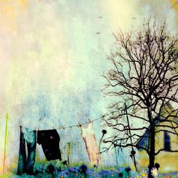 freetoedit laundryday bluejeansfaded springclean backyardparadise clothesline timetomow surreality storybookart