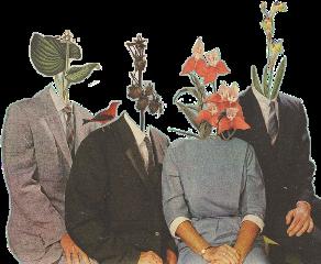 magizine magazineclippings flowers plantsaesthetic peopleaesthetic people freetoedit