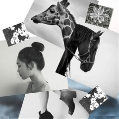 For,this,edit,challenge,,create,an,awesome,black,and,white,collage,for,the,win!