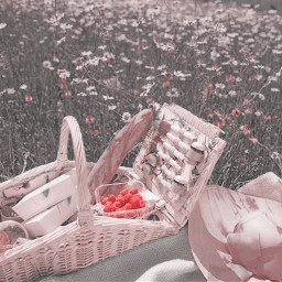 s0fts freetoedit aestheticpic aestheticpicture aestheticstuff gachaeditor aestheticart aestheticpink pinkaesthetic peachyaesthetic softaesthetic softieaesthetic angelcore cottagecore fairycore softcore picnic
