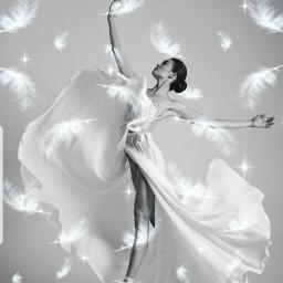 white blackandwhite whitefeathers feathers freetoedit