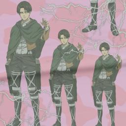 leviackermann levi attackontitan shingekinokyojin anime