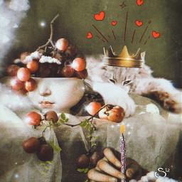 happybirthday mycat catsofpicsart fantasy dreamy magical furmama collection stestyle ste2021 madewithpicsart lotsoflove