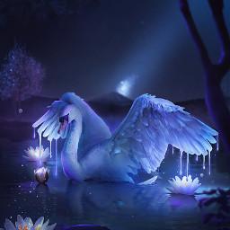 picsart makeawesome papicks swan lake magical flowers lotus trees night nightsky photomanipulation photoshop freetoedit