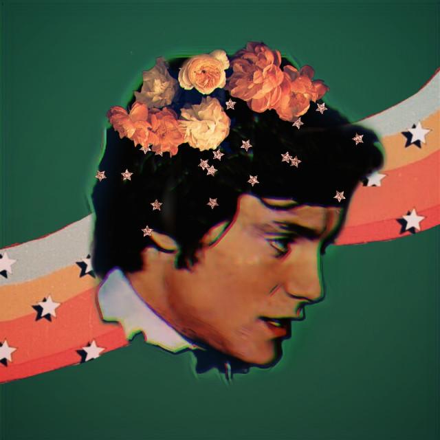 #massimoranieri #fanart #vintageaesthetic #vintagestars #70sedit #portrait #vintageflowers
