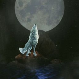 freetoedit lonewolf moon edit bread