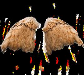 wingsticker freetoedit