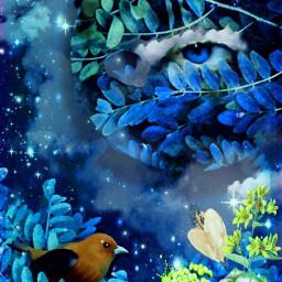 freetoedit eyeinthesky birdinatree starrynight bleueyesbleusky fantasyart bluebleu remixedbyme