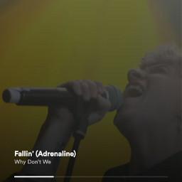 fallinwdw