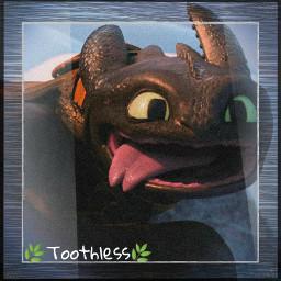 httyd2 howtotrainyourdragon httyd toothlessthenightfury toothless nightfury