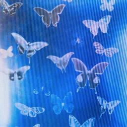 picsart freetoedit remix remixme butterfly blue window remixedwithpicsart y2k yk2 2000s indiekid mexico peru