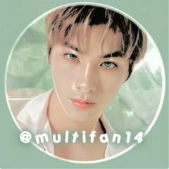 multifan14
